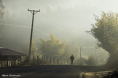 Una fria mañana (Alfredo Santamaria) Tags: hualqui regióndelbíobío chile cl alfredosantamaria fotoclubconcepcion inviernoamanecer rural campo