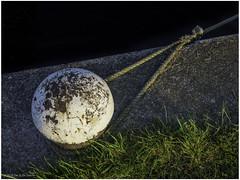 Bollard (Luc V. de Zeeuw) Tags: bollard grass line maritime quay rope sasvangent zeeland netherlands
