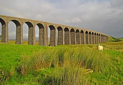 The Arches (RoystonVasey) Tags: canon digital ixus 95 is north yorkshire dales ydnp settle carlisle railway ribblehead summer