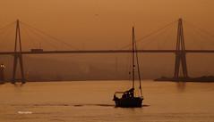 Viajantes (verridário) Tags: sony iate mondego figueiradafoz rio river boat night light morning low navegar barco manana manha matin serenity serenidade