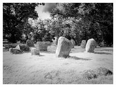 Croft Moraig IR (marcusbentus) Tags: lumix panasonic dcfz82 croft moraig stone circle perthshire scotland croftmoraig aberfeldy trossachs prehistoric 2000 bc kenmore loch tay schist standingstones standing grass landscape tree monochrome sky park rock ir infrared spectrum