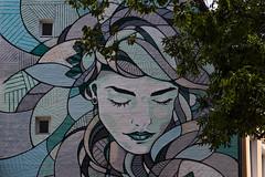 Hamburg (michael_hamburg69) Tags: hamburg germany deutschland hansestadt mural wandbild wandgemälde frau gesicht weiblich female künstler artist streetart urbanart andreaspreis 2018 abstractflavour paulroosenstr20 apreis