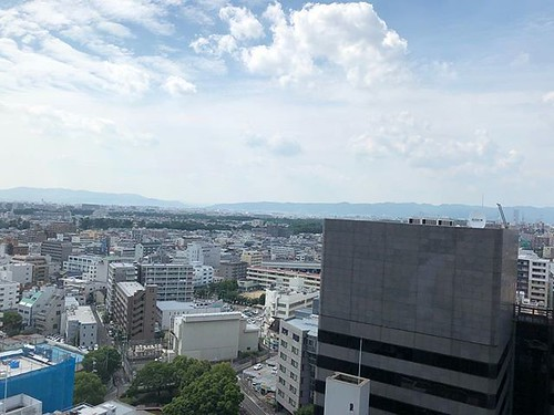 大阪地震 画像4