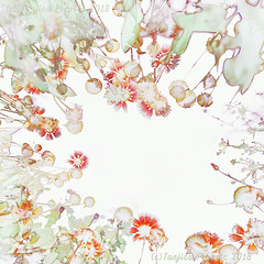 Ethereal Summer Garden (Tanjica Perovic) Tags: flowers floral abstract botanical botany plants garden red green light transparent intangible delicate dainty fairy rafined gentle soft fragile romantic beautyinnature natural organic herbs vitality growth summer dreamy petals leaves pattern highkey lowangle multipleexposure design creative