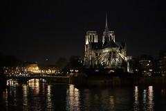 Paris (zmotoly) Tags: paris france february février cathédrale notredame cathedral notre dame night nuit seine