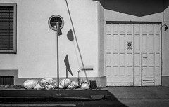 20180623_036_JPEG FULL (Domenico Cichetti) Tags: olympustrip35 blackwhite blackandwhite bw bustoarsizio bn selfdevelop selfdevelope argentique analogicait analogico kentmere100 olympus studional