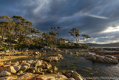 Moody evening light at Skeleton Bay (sarahOphoto) Tags: bay skeleton australia tasmania beach sand landscape sea ocean water trees tall moody sky clouds stormy skies canon 6d nature seascape rocks evening light binalong