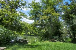 Nolichucky River - Davy Crockett birthplace state park
