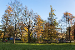 Autumn. Alexander Palace. (fedoseenko) Tags: санктпетербург россия красота colour природа nature beauty blissful loveliness beautiful saintpetersburg sunny art shine dazzling light russia day green park peace tree trees garden blue white голубой небо лазурный color sky pretty sun пейзаж landscape clouds view heaven mood serene golden grass field wood autumn gold пейжаз colours alley town outdoors picture отражение облака архитектура walkway architecture building palace tsar alexanderpalace