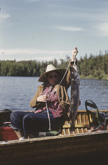 A woman in a canoe catching a fish in the Lake of the Woods near Nestor Falls, Ontario / Une femme dans un canot montrant sa prise dans le lac des Bois près de Nestor Falls (Ontario) (BiblioArchives / LibraryArchives) Tags: lac bac libraryandarchivescanada bilbiothèqueetarchivescanada canada canoe canot canoes canots podcast balado woman femme fish poisson lakeofthewoods lacdesbois nestorfalls ontario frankroyal july1950 juillet1950 nationalfilmboardofcanada stillphotographydivision officenationaldufilmducanada servicedelaphotographie
