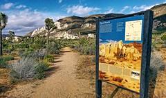 Ryan Ranch- Joshua Tree National Park- Riverside County CA  (1) (kevystew) Tags: california riversidecounty joshuatree ryanranch nationalregister nationalregisterofhistoricplaces nationalpark sign map