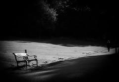 In the park (MortenTellefsen) Tags: park bw blackandwhite blackandwhiteonly norway norwegian bench benk bnw