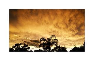 Sunset Florida