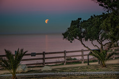 Blood Moonset (Michael F. Nyiri) Tags: bloodmoon moon fullmoon pointvicente palosverdespeninsulacalifornia california sunrise