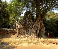 Angkor, Ta Som Temple 20180203_110133 DSCN2643 (CanadaGood) Tags: asia seasia asean cambodia siemreap angkor tasom temple tree sculpture building people person wall architecture archaeology canadagood 2018 thisdecade color colour buddhist khmer