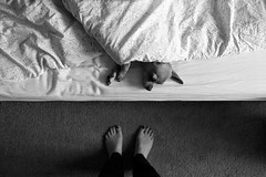 Sleepy (niedergassel) Tags: fuji perspective teppich dog cute tiny cozy home blackandwhite pets chihuahua bed lovely feet