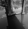 über Wasser gehen (Rene_1985) Tags: leica q typ116 spreewald lübben 28mm 17 summilux see teich wasser water bw sw c schwarz weis monochrom