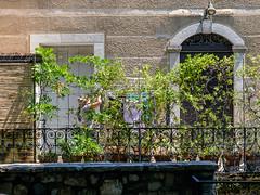 04072018-DSCF8628-2 (Ringela) Tags: saintlaurentleminier architecture building cevenole france travel juli 2018 fujifilm xt1 languedocroussillon cévennes