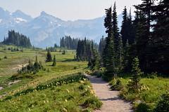Skyline Trail 2 (jimculp@live.com / ProRallyPix) Tags: mountrainiernationalpark washington nps mountain