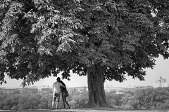 View to Future (Marija Mimica busy!!!) Tags: black blackwhitephotos people photographing plant tree forest moments monochrome magicmoments humanemotion
