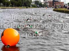 Triatlon ZVL-1886 Leiderdorp 12 aug. 2018 1e deel  nr 3.jpg (waterpolo photos) Tags: 2018 leiderdorp dezijl zvl1886 12aug2018 swimming zwemmen river sport triatlon rivier triathlon nederland netherlands
