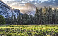 Half Dome at Sunrise (My Americana) Tags: yosemitenationalpark yosemite np nationalpark california yosemitevalley halfdome sunrise scenic landscape