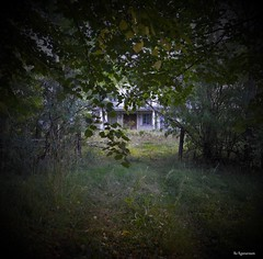 The Abandoned Forest Mansion (Bo Ragnarsson) Tags: mansion abandoned urbanexploring forest residentevil boragnarsson abandonedhouse