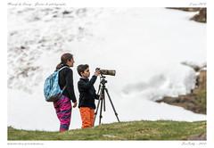 Massif du Sancy (BerColly) Tags: france auvergne puydedome sancy photographe animalier bercolly google flickr neige snow montagne mountain