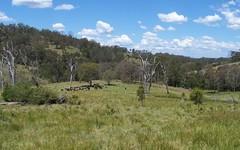 Razorback Creek, Rivertree NSW