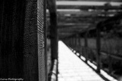 Caídas (Eurus' Photography) Tags: cestlavie cotidianidad fotografiaurbana urbanphotography fotografianoir noirphotography fotografiablancoynegro blackandwhitephotography fotografiadocumental documentalphotography cortaexposición shortshot blancoynegro blackandwhite altocontraste highcontrast altanitidez highquality retrato portrait mancha fleck byn bnw photobyeurusj canonrebelt3 macroobjetivo photoshop