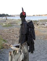 cormorant (axiepics) Tags: art beachart paullewis esquimaltlagoon colwood victoria driftwood beach creations birds cormorant