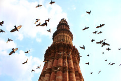 Center of attraction (Rishabh_Sharma_In) Tags: international landmark historical tribute palace heritage traditionally famous place dome monuments canon eos 1200d adobe lightroom qutab delhi india bird architecture art birds sky clouds blue monument travel amazing beauty best flickr