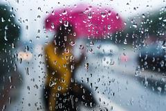 Rainy day (Curtains of Mist) Tags: belgrade streetphotography streetlife rain rainyday umbrella raindrops streetphoto decisivemoment candid fujifilm fujix100f reflections