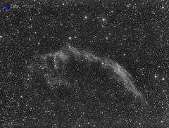 Velo de Este (http://celfosc79.blogspot.com.es/) Tags: astronomía astronomy astrofotografia astrophotografy cieloprofundo nebulosa ngc ngc6992 ed80 skywatcher lxd75 meade qhyccd qhy163 qhy163m astrometrydotnet:id=nova2772884 astrometrydotnet:status=solved