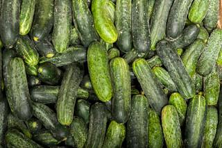 Cucumber background Cucumber harvest