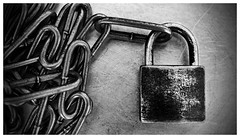 095 of 365 - Strong (Weils Piuk) Tags: photoblog365 strong unbreakable chain padlock hard closed cold metal gray white black linked frozen