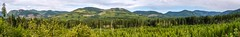 Along Pacific Marine Road - Panorama (MIKOFOX ⌘ Thanks 4 Your Faves!) Tags: canada britishcolumbia mikofox xt2 forest logging vancouverisland learnfromexif july landscape provia forestry fujifilmxt2 panorama summer showyourexif reforestation xf18135mmf3556rlmoiswr