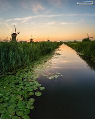 Kinderdijk (dieLeuchtturms) Tags: zuidholland windmühle meer europa sonnenuntergang niederlande wasserspiegelung 4x5 polder kinderdijk europe waterreflections nederlands reflection sea sunset waterreflection windmill nl