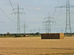 Rhein-Erftkreis (EnDie1) Tags: endie1 2018 rheinerftkreis felder ernte getreide strom energie