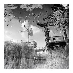 industrial romantic (rcfed) Tags: hasselblad mediumformat film trix tanol development water sky cloud reflection monochrome plant industrial romantic
