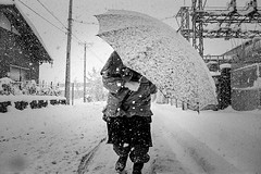 winter 604 (soyokazeojisan) Tags: japan shiga winter street city people bw blackandwhite monochrome analog olympus m1 om1 28mm film trix kodak memories 昭和 1970s 1975 snow
