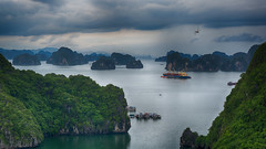 Dragonfly and Halong Bay Waterscape (Halong Bay, Vietnam. Gustavo Thomas © 2018) (Gustavo Thomas) Tags: dragonfly libélula insect beauty titopisland vietnam vietnamese seascape landscape sea bay halongbay life travel trip voyage voyager nature asia indochine adventure waterscape