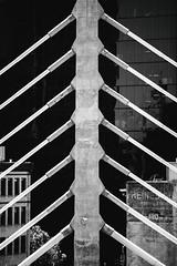 Transbay Terminal Opening Day (Thomas Hawk) Tags: america bayarea california pelliclarkepelli pelliclarkepelliarchitects sf sfbayarea salesforcepark salesforcetransitcenter sanfrancisco transbayterminal transbayterminalopeningday transbaytransitcenter us usa unitedstates unitedstatesofamerica westcoast architecture bridge bw transbay terminal opening day
