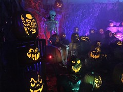 Jack-o-lanterns and skeleton in pumpking patch (JacksonSha) Tags: wickedpumpkinhollow pumpkin patch jackolanterns creatures midsummer scream halloween horror convention 2018 skeleton spooky carvings blacklight