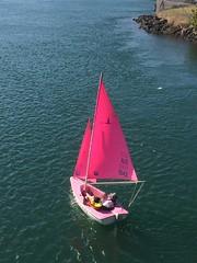 Pink sails on the Tweed River. (marsh_maureen) Tags: sailing boat river water sails pink tweedriver