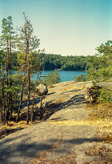 Stockholm Archipelago (Davenant's Nose) Tags: stockholmarchipeligo ektar kodakmedalistii medalistii