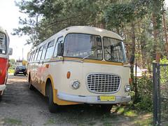 Jelcz 043 (transport131) Tags: bus autobus muzeum motoryzacji techniki otrębusy jelcz 043