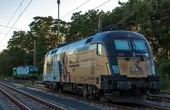 04_2018_08_05_Wanne-Eickel_Üwf_ES_64_U2_-_023_6182_523_DISPO_6193_277_ELOC_TXL_ (ruhrpott.sprinter) Tags: ruhrpott sprinter deutschland germany allmangne nrw ruhrgebiet gelsenkirchen lokomotive locomotives eisenbahn railroad rail zug train reisezug passenger güter cargo freight fret herne wanne eickel wanneeickel üwf atlu vectron siemens 6182 6185 6193 es 64 u2 es64u2 mrcedispo mrcedispolok mrce dispo stellwerk stellwerküwf txl txlogistik kaiser franz outdoor logo natur werbung