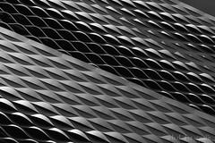Reptile-Building (benno.dierauer) Tags: messeplatz basel kantonbasel architecture architektur blackandwhite schwarzweiss schweiz switzerland canon70d abstract abstrakt