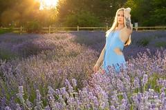 Jessica (austinspace) Tags: woman portrait spokane washington green bluff fleurdeprovencelavenderfarm lavender sunset dusk magichour blond blonde summer